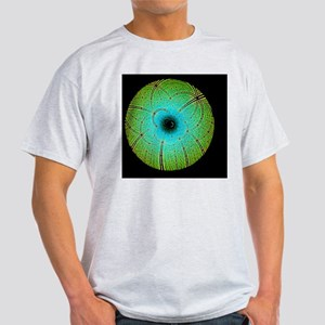 Laue diffraction of enzyme Rubisco Light T-Shirt