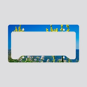 Lake-side flowers License Plate Holder