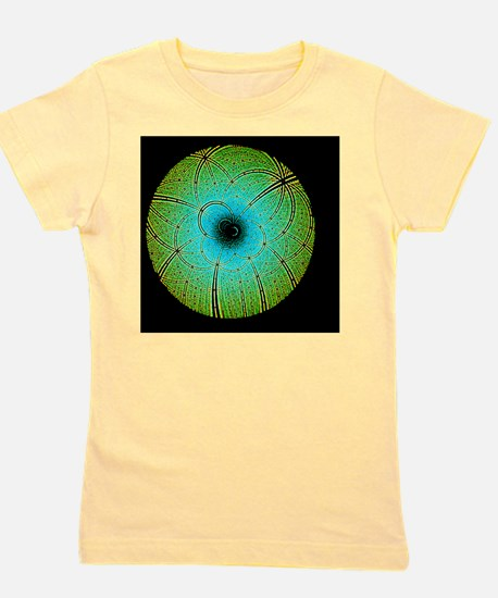 Laue diffraction of enzyme Rubisco Girl's Tee