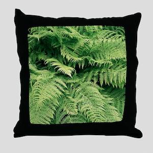 Lady fern fronds (Athyrium filix-femi Throw Pillow