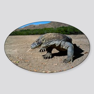 Komodo dragon Sticker (Oval)
