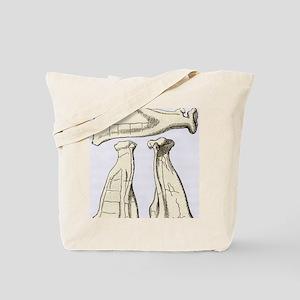 Kalmyk bone divination scapulas, artwork Tote Bag