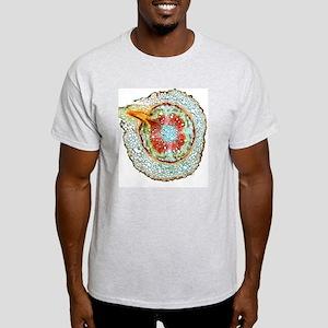 Kidney bean root, light micrograph Light T-Shirt