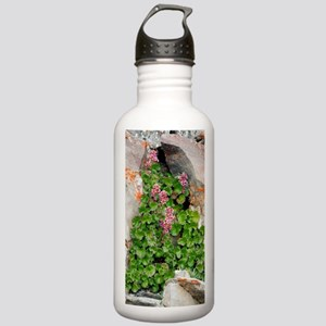 James' Saxifrage (Tele Stainless Water Bottle 1.0L
