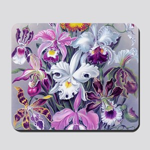 4 PILLOW 16IN-Hkl BQORCHIDS Mousepad