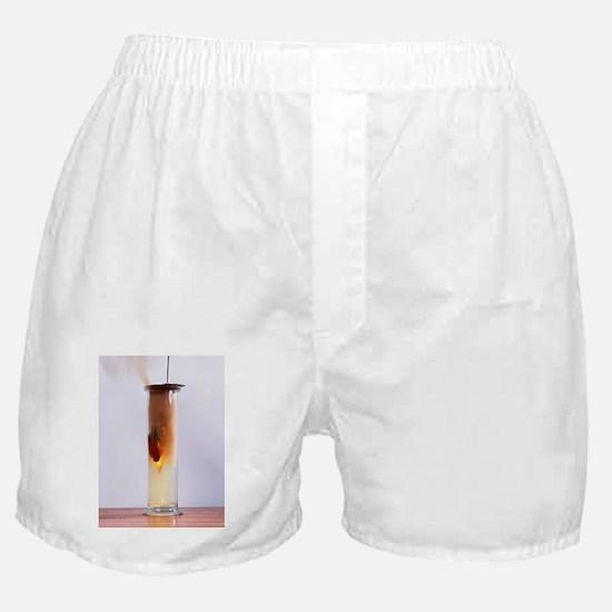 Iron reacting with chlorine Boxer Shorts