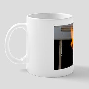 Investigating combustion of hydrogen Mug