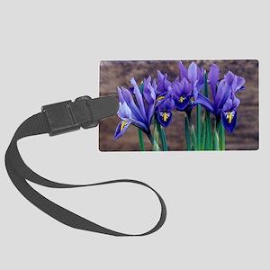 Iris 'Joyce' flowers Large Luggage Tag