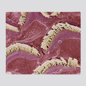 Inner ear hair cells, SEM Throw Blanket