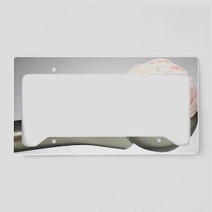 Ice cream scoop License Plate Holder