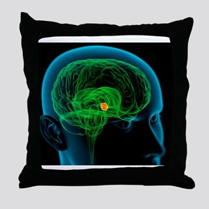 Hypothalamus in the brain, artwork Throw Pillow
