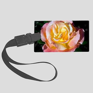 Hybrid tea rose (Rosa 'Fulton Ma Large Luggage Tag