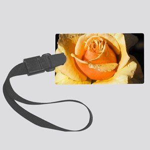 Hybrid tea rose (Rosa 'Royal Par Large Luggage Tag