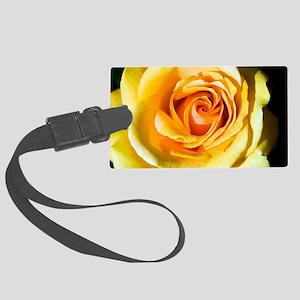 Hybrid tea rose (Rosa 'Just Joey Large Luggage Tag