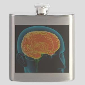 Human brain, artwork Flask