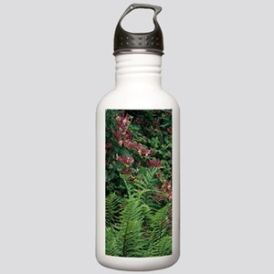Honeysuckle and male f Stainless Water Bottle 1.0L