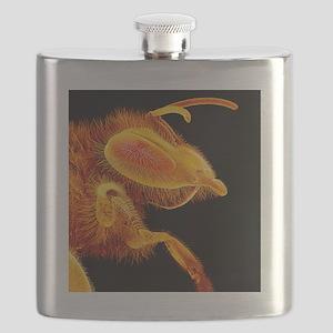 Honey bee, SEM Flask