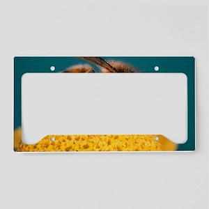 Honey bee on flower License Plate Holder
