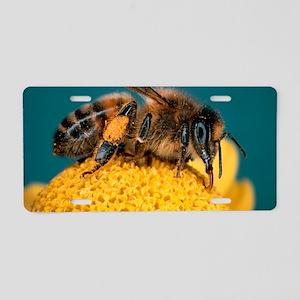 Honey bee on flower Aluminum License Plate