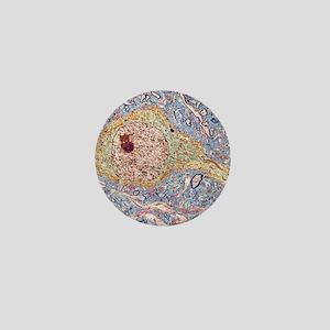 Hippocampus neuron, TEM Mini Button