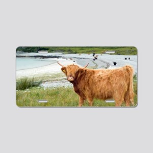 Highland cattle by the sea Aluminum License Plate