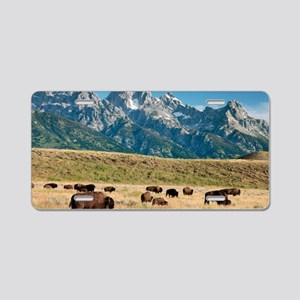 Herd of American Bison Aluminum License Plate
