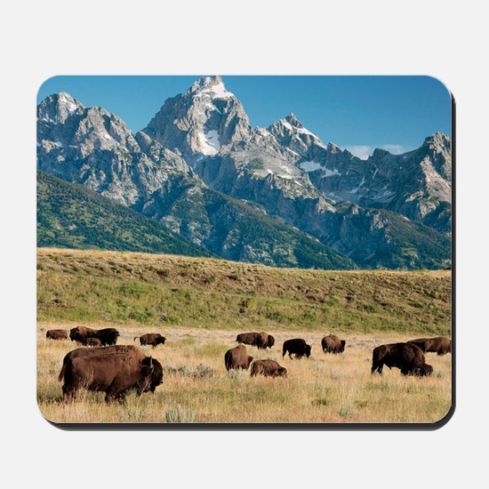 Herd of American Bison Mousepad