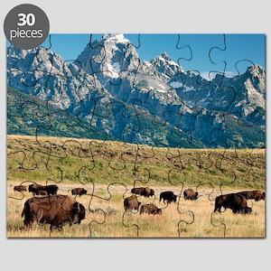 Herd of American Bison Puzzle