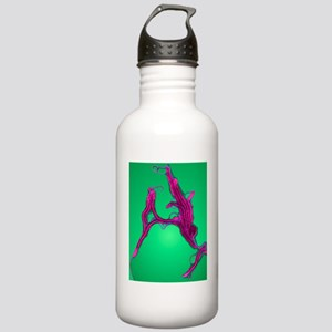 Helicobacter bacteria, Stainless Water Bottle 1.0L