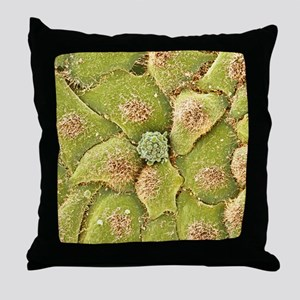 HeLa cells, SEM Throw Pillow