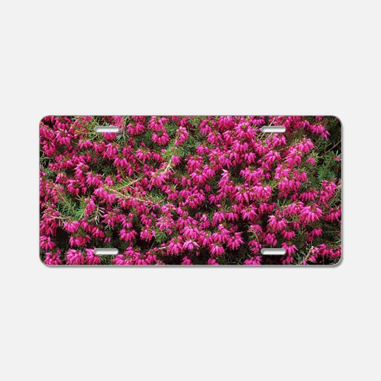 Heather 'Nathalie' flowers Aluminum License Plate
