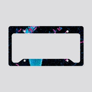 Helicobacter pylori bacteria, License Plate Holder