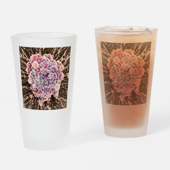 HeLa cell dying, SEM Drinking Glass