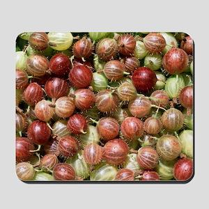 Harvested gooseberries Mousepad