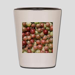 Harvested gooseberries Shot Glass