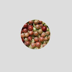 Harvested gooseberries Mini Button