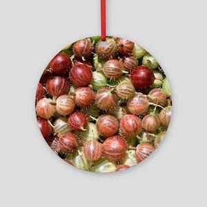 Harvested gooseberries Round Ornament