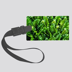 Hart's tongue fern Large Luggage Tag