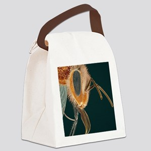 Head of a honey bee, SEM Canvas Lunch Bag