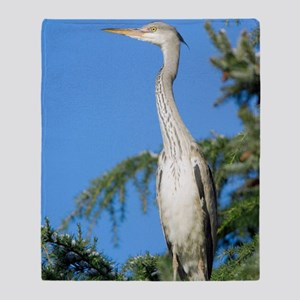 Grey heron perched in a tree Throw Blanket