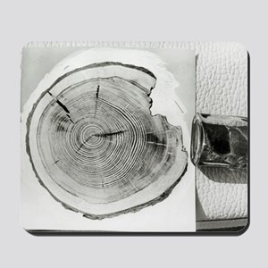 Growth rings on a tree from Tunguska Mousepad
