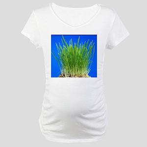 Green shoots Maternity T-Shirt