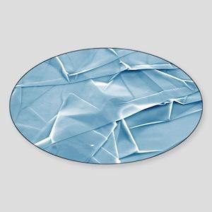 Graphene, SEM Sticker (Oval)