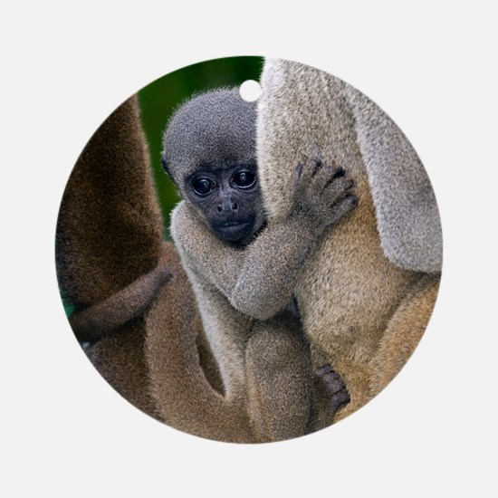 Gray woolly monkey baby Round Ornament