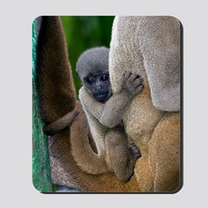 Gray woolly monkey baby Mousepad