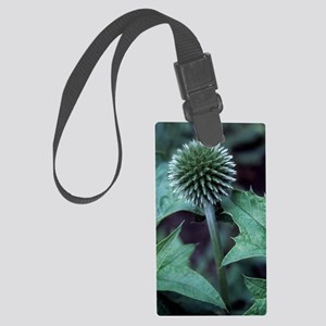 Globe thistle 'Veitch's Blue' Large Luggage Tag