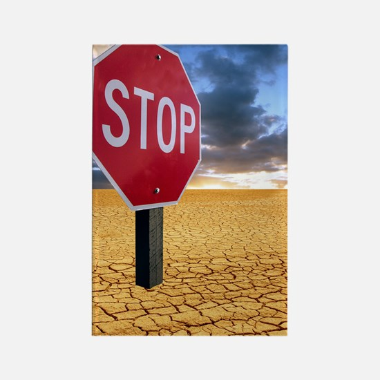 Global warming warning, conceptua Rectangle Magnet