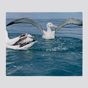 Gibson's wandering albatrosses Throw Blanket
