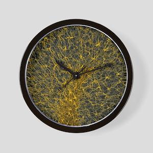 Glial cells, confocal light micrograph Wall Clock