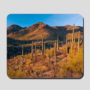 Giant Cactus (Carnegiea gigantea) Mousepad